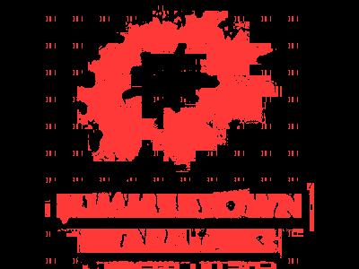 summertown-stars-fc-logo